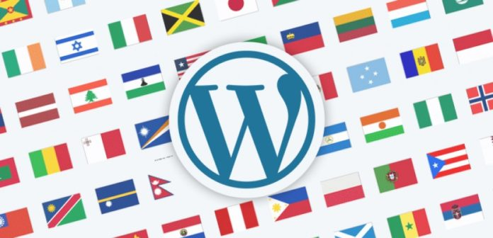 wordpress transaltion plugins