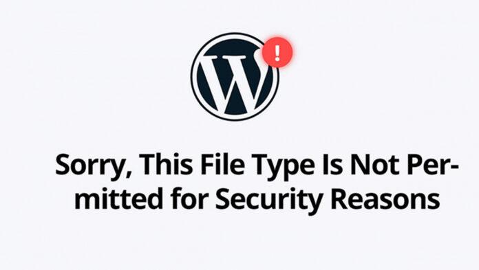 Non-Image File Upload Errors in WordPress